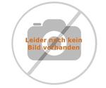 VW Amarok Fensterschutzgitter für die Heckscheibe